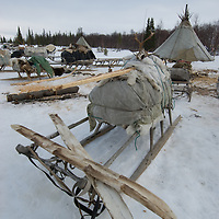 North of the Arctic Circle in Russia, a homemade pair of skis (with skins on the bottom) sits atop a nomadic Komi reindeer herder's sled.  These are often left loaded from one camp to the next.  In the background are chums (tepees).