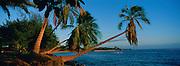 West Kauai Shoreline, Kauai, Hawaii, USA<br />