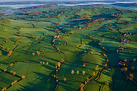 France, Saône-et-Loire (71), bocage du pays Charolais-Brionnais, paysages culturels de l'élevage bovin candidat pour l'Unesco // France, Burgundy, Saone et Loire, hedgerow landscape