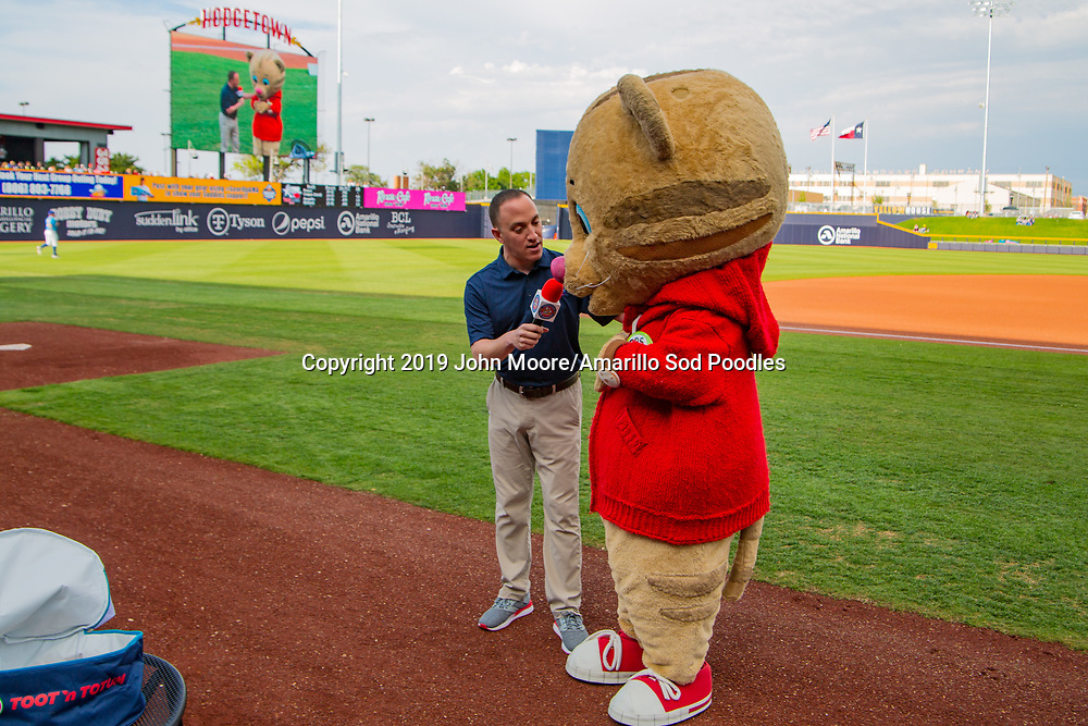 The Amarillo Sod Poodles played against the Midland RockHounds on Saturday, May 25, 2019, at HODGETOWN in Amarillo, Texas. [Photo by John Moore/Amarillo Sod Poodles]