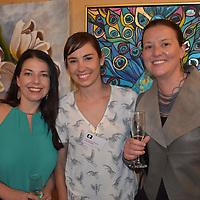Mt Eliza North Primary Art Show 2017