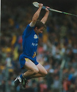 Goalkeeper Davy Fitzgerald celebrates the victory against Offaly at the final whistle in 1995.