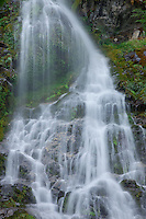 Foliage thrives throughout the moving waters of this beautiful cascade.