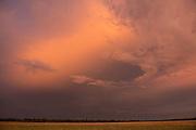 Pastel shades as dusk approaches on Liuwa Plain