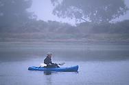 Kayaker in kayak in calm still water of estuary in fog, Morro Bay State Park, California