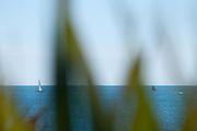 Seascape 0013