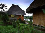 Two thatch-roofed cabanas at the Napo Wildlife Center, a Quechua-run ecolodge in the Amazon of Ecuador.