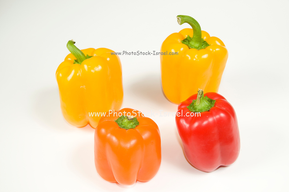 Yellow Orange and Red Bell peppers (Capsicum annuum) on white background