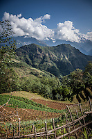 Stunning views of the Annapurnas and surrounding countryside.
