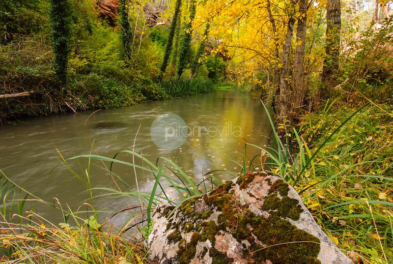 Hoz del Rio Gallo.Parque Natural del Alto Tajo.Guadalajara ©Antonio Real Hurtado / PILAR REVILLA