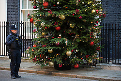 London, UK. 2 December, 2019. A police officer stands alongside a Christmas tree from Dartmoor outside 10 Downing Street. It was supplied by family business Dartmoor Christmas Trees after they won the Champion Grower prize in an annual competition.