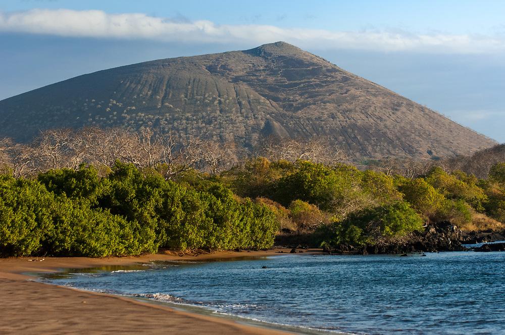 Espumilla Beach<br /> Santiago Island, GALAPAGOS ISLANDS<br /> ECUADOR.  South America