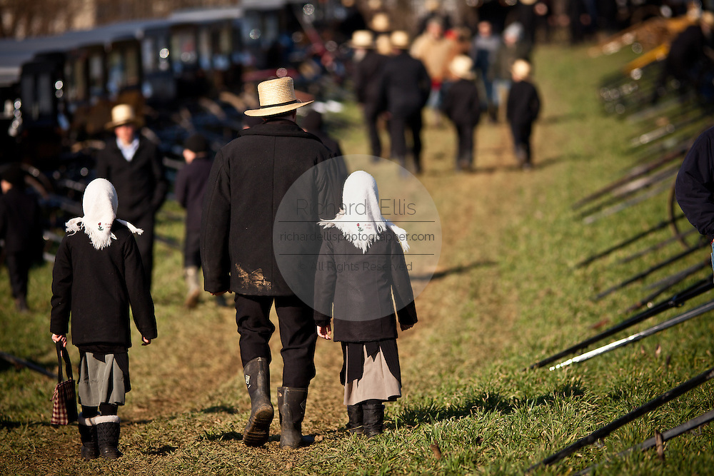 Amish man walks with his children past dozens of buggies ready for auction during the Annual Mud Sale to support the Fire Department  in Gordonville, PA.