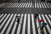 JAPAN, TOKYO, FEBRUARY 2013 -  People with umbrella under rain on a crosswalk near tamachi station in Mita [FR] Personnes avec des parapluies sur un passage pieton proche de la gare de Tamachi à Mita