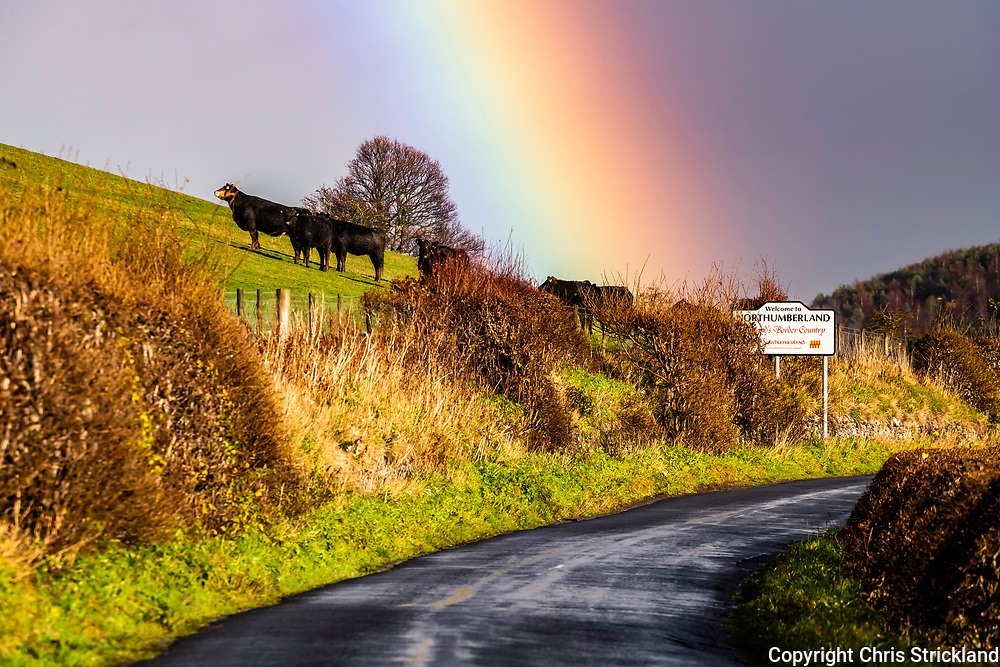 Yetholm, Kelso, Scottish Borders, UK. 26th November 2018. A rainbow arches over the Bowmont valley and the Anglo Scottish Border near Yetholm village in the Cheviot Hills.