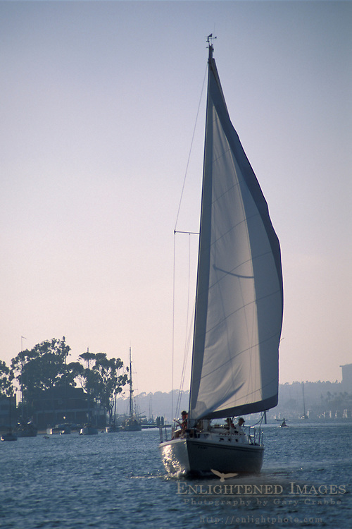 Sailboat sailing in harbor channel, Newport Beach, Orange County, California
