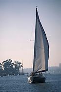 Sailboat sailing in harbor channel, Newport Beach, Orange County, California
