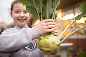 Ecotrust Farm to School Project