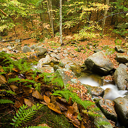 A tributary of the Baker River in Groton, New Hampshire.
