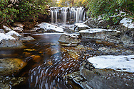 The falls of Big Run, a tributary of the Blackwater River, flows through the evergreen populated forest, surrounded by a fresh covering of snow.