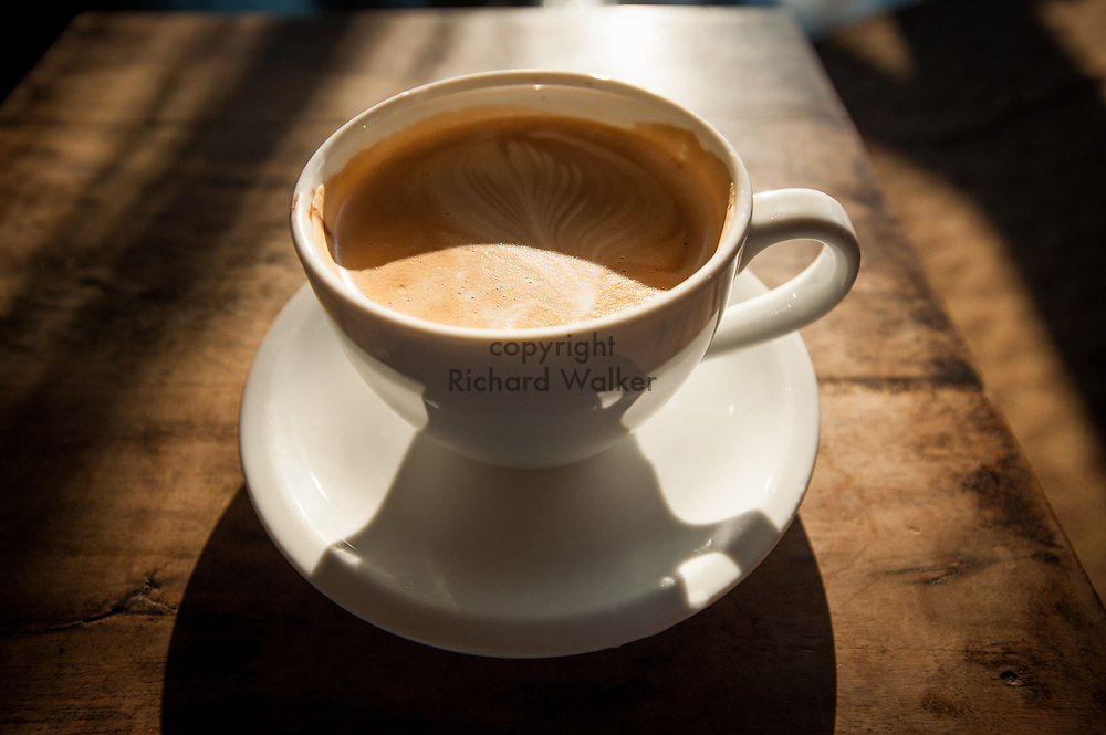 2013 November 21 -  Coffee in a cup in the sun, Bothell, WA. By Richard Walker