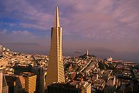 Transamerica pyramid and the skyline of San Francisco, San Francisco, California