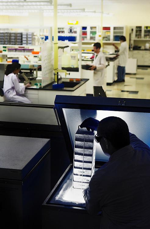 Biotech freezer