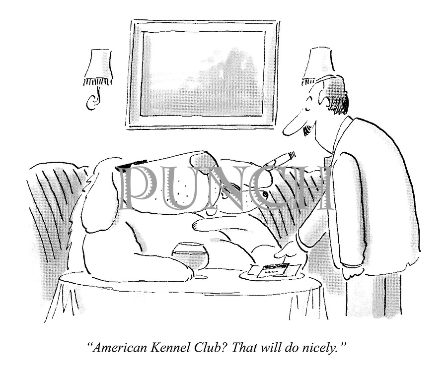 """""""American Kennel Club? That will do nicely."""""""