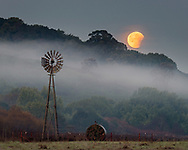 Super Blue Blood Moon Lunar Eclipse sets next to windmill while coming out of totality in a rare 150-year convergence, Contra Costa County, California