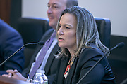 Elisa Zurlini, Assistant Vice President, Financial Institutions, Mergers & Acquisitions, AIG speaking on the Claims Session: The Claim Settlement Process panel during the Advisen's Transaction Insurance Insights Conference at New York Law School.