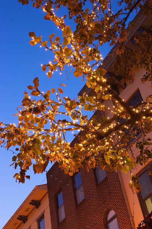 Bloomington Court House Square Lights October