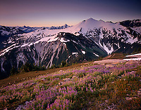 MORNING LIGHT ON RUTH MOUNTAIN AND MEADOWS OF HANNEGAN PEAK, MT. BAKER WILDERNESS WASHINGTON