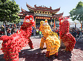 Celebration of the Lunar New Year 2016