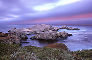 Bird Island, Point Lobos State Park, cormorants