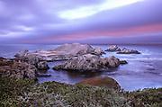Bird Island, Point Lobos State Park, cormorants