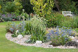 Eryngium x oliverianum and Eryngium agavifolium planted in a bed covered with pebbles and rocks. Bench seat beyond