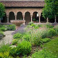 Botanicals: Ornamental Gardens