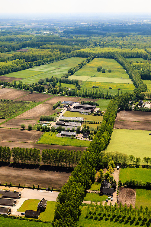 Nederland, Noord-Brabant, Gemeente Boxtel, 27-05-2013; De Scheeken, ten westen van Sint-Oedenrode. Varkensboerderijen. <br /> Ruilverkaveling De Scheeken maakt deel uit van het Nationale Landschap het Groene Woud. Het gebied was voor de ruilverkaveling sterk versnipperd en kende een gebrekkige ontwatering. Ruilverkaveling uitgevoerd in de jaren veertig van de vorige eeuw, wederopbouwperiode. Het onderliggende landschapsplan hield rekening met streekeigen karakter van het cultuurlandschap.<br /> National Landscape Groene Woud (Green Forest). The area was fragmented before land consolidation and had a poor drainage. Land consolidation took place in the forties of the last century, reconstruction period. The landscape plan took into account the typical local character of the landscape.<br /> luchtfoto (toeslag op standard tarieven)<br /> aerial photo (additional fee required)<br /> copyright foto/photo Siebe Swart
