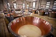 The famous Parmigiano-Reggiano Cheese Factory in Parma Italy
