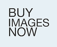 Buy Images Now