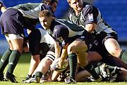 Reading, Berkshire, UK., 19th September 2004, Zurich Premiership Rugby, London Irish vs Leicester Tigers, Madejski Stadium, England,<br /> London Irish's sub scrum half Paul Hodgson.