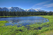 Coast Mountains on the Stewart-Cassiar Highway<br /> <br />  Stewart-Cassiar Highway<br /> British Columbia<br /> Canada