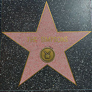 The Simpsons Star on The Walk Of Fame