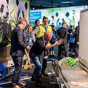 NLD/Amsterdam/20170412- Aankomst reuzenpanda's WU WEN en XING YA in Nederland,  Marcel Boekhoorn bij de panda