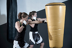 Two sportswomen are boxing on a punching bag, Bavaria, Germany