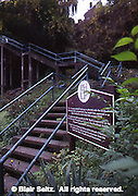 Pittsburgh, PA, Historic Steps to Hillside Houses