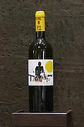 Tareti white. Biblia Chora Winery, Kokkinohori, Kavala, Macedonia, Greece
