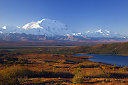 Alaska. In this view above Wonder Lake, the autumn tundra adds a colorful foreground to Mt. McKinley basked in morning light, Denali National Park.