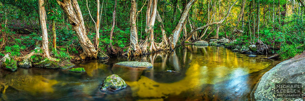 A panoramic photograph of a beautiful creek scene high up in in the Great Dividing Range near Cairns.<br /> <br /> 3:1 Panoramic Print. Available in 40in (100cm) to 80in (200cm) sizes.<br /> <br /> Limited Edition of 125<br /> <br /> Code: HAQT0135