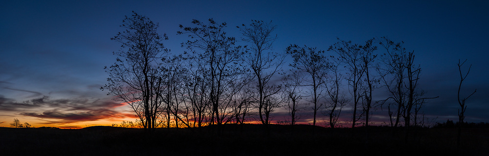 The sun begins to rise over Shenandoah National Park, as seen from Big Meadows along Skyline Drive.